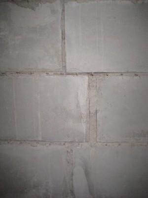 Через щели между блоками можно подглядывать за соседями - IMG_0005.JPG