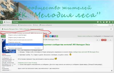 Функционал сообщества жителей ЖК Мелодия Леса - Ссылки.png