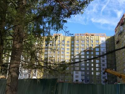 Ход строительства восьмого корпуса - IMG_20170601_170527.jpg