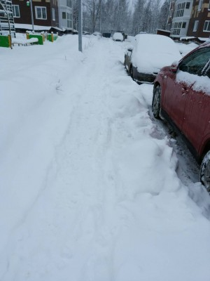 Все дружно на чистку снега  - IMG-83f19ae99d6309e39e5dc86e1a7d7d23-V.jpg