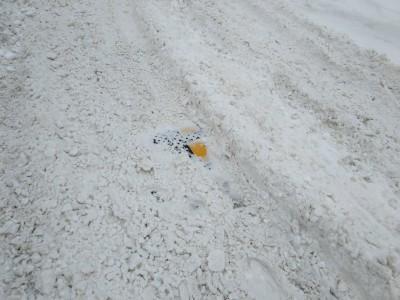 Все дружно на чистку снега  - IMG-5876493c1d9bef8a4eb00b7c3cd5affc-V.jpg